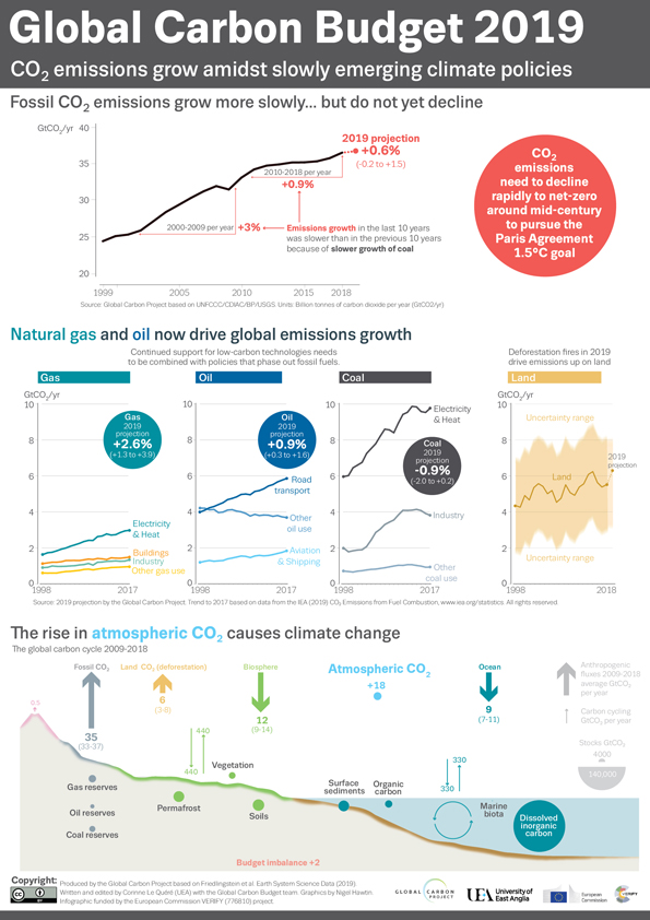 Infographic of carbon emissions for 2019