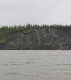 Riverbank sediment deposits