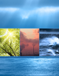 Image formed of five seperate images one at the top,